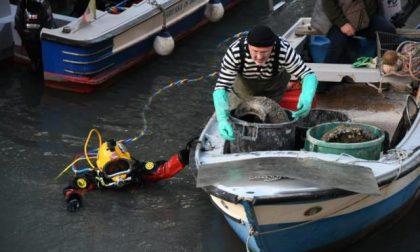 Venezia, gondolieri sub in azione: raccolti tonnellate di rifiuti