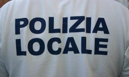 Mestre, arrestata all'ufficio anagrafe un'ucraina che si spacciava per rumena