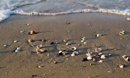 Easy Summer: ecco l'App per le spiagge che unisce divertimento e sicurezza