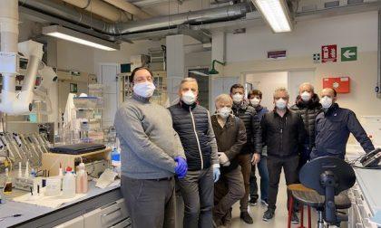 Ca' Foscari studia una molecola naturale per eliminare il coronavirus dalle superfici