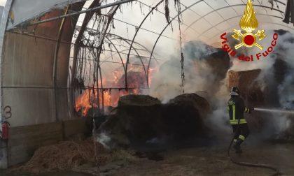 Incendio a Oriago di Mira: in fiamme capannoni agricoli GALLERY