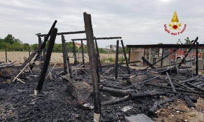 Incendio ad Eraclea: in fiamme un maneggio privato, morti 4 cavalli GALLERY