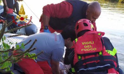 Intervento dei sommozzatori a Chioggia: recuperato un cadavere nel Brenta GALLERY