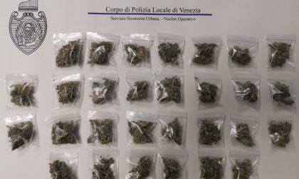 Aveva nelle mutande 30 bustine di marijuana pronte per lo spaccio: bloccato pusher al parco Albanese
