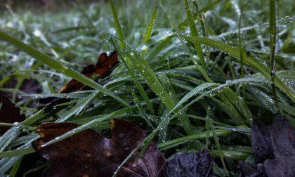 Allerta meteo: da stasera fino al 3 luglio possibili precipitazioni intense