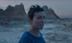 """Festival del Cinema: tante polemiche per un'edizione """"non all'altezza"""""""