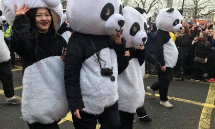 Percezione della Cina in era Covid tra diffidenza e timori