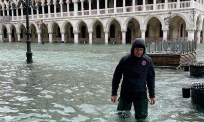 """""""Acqua granda 2019"""": già passato un anno da quando Venezia venne sfigurata - FOTO"""