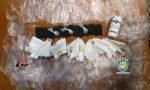Pusher domestico riforniva di cocaina il quartiere Piave