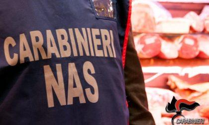 Topi e muffa tra gli alimenti in vendita, chiuso negozio etnico