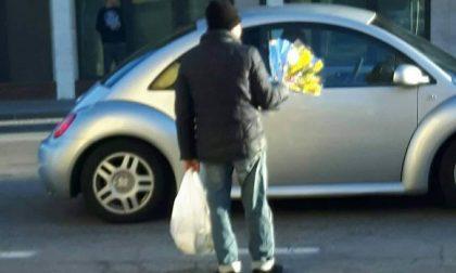 Mimose 8 marzo, appello al sindaco di Spinea contro i venditori abusivi