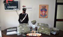 Professione: agente di commercio… di marijuana. 22enne di San Donà di Piave beccato con 6 chili d'erba