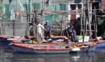 """L'Europa mette un """"freno"""" alla pesca e il mercato ittico teme di """"affondare"""""""