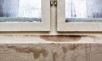 Problemi di umidità: quali sono quelli più comuni in casa e come eliminarli