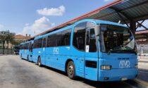 Passeggera del bus minacciata e offesa per il colore della pelle