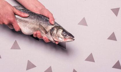 """""""Il pesce non è fresco"""", lo chef non digerisce le critiche e prende a cazzotti il cliente"""
