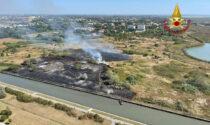 Le foto e i video del vasto rogo a Mestre: in fumo 5 ettari di terreno